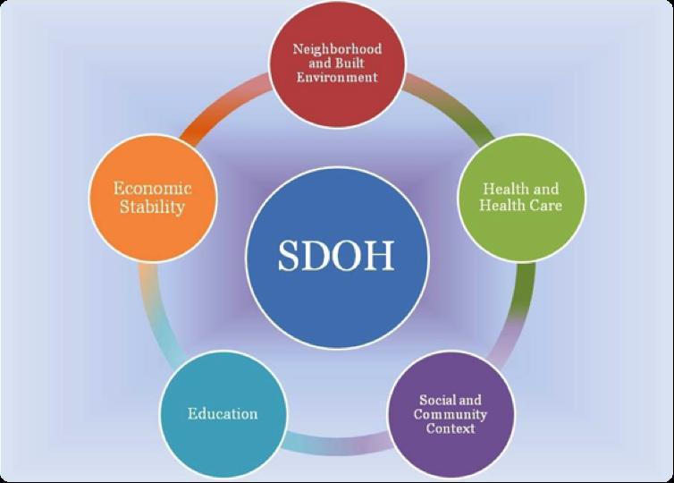 Social Determinants Of Health Blog Afahc